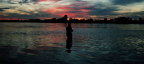 Загородный отдых - рыбалка